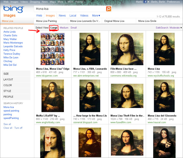 Bing imageSearch (Mona Lisa) - View Large