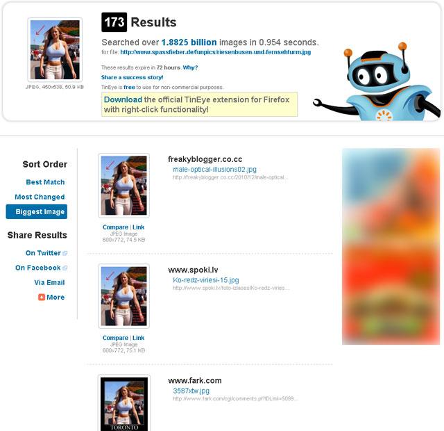 tinEye example screen