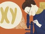 Nettie Stevens Google Doodle